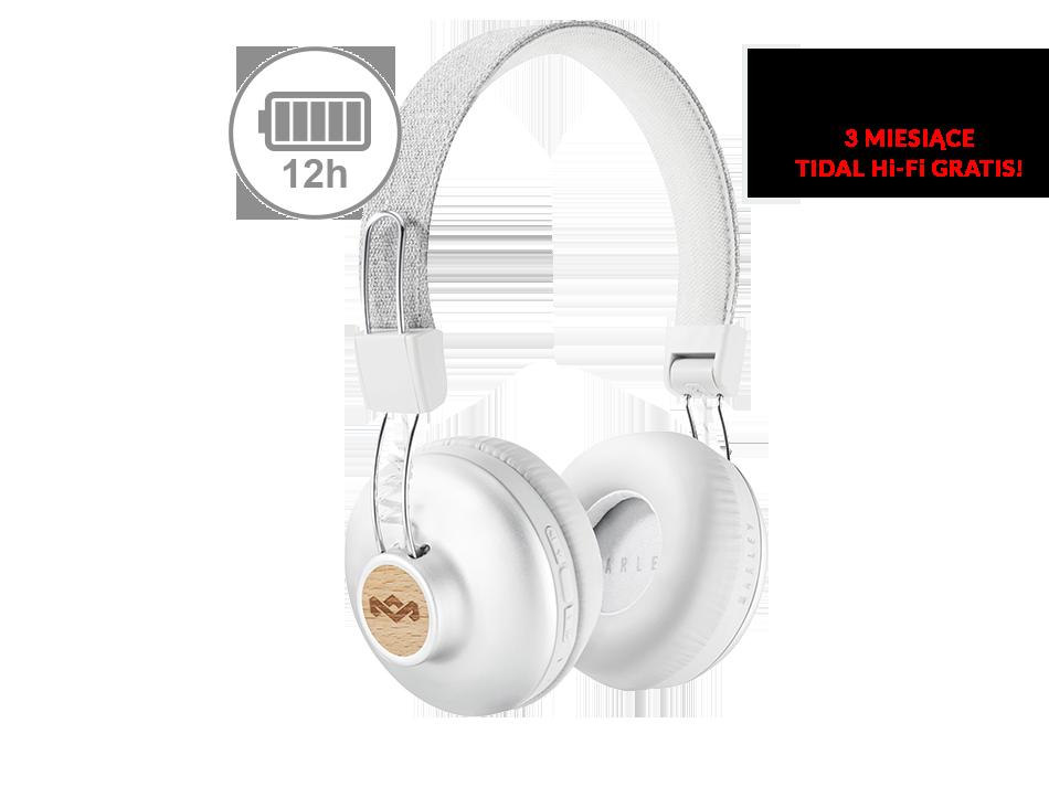 Positive Vibration 2 Wireless silver