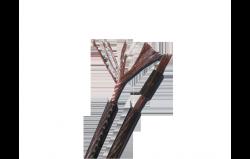TDC 300 F Kabel Głośnikowy